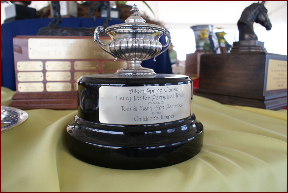 The Harry Potter Trophy by Mary Ann & Tom Parmelee
